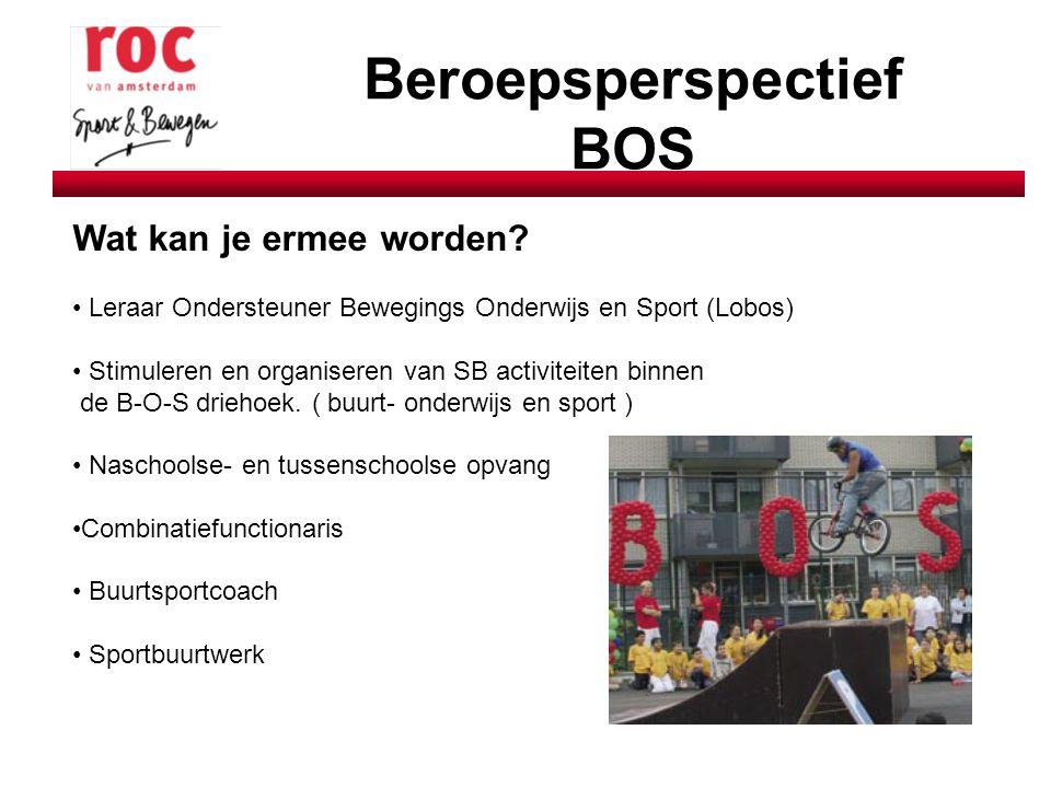 Beroepsperspectief BOS