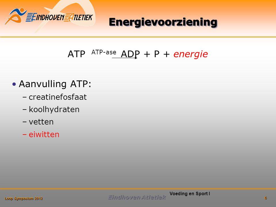 ATP ATP-ase ADP + P + energie