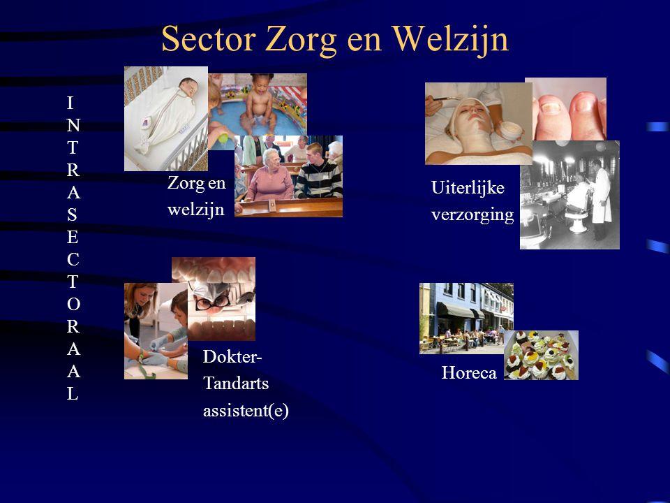 Sector Zorg en Welzijn I N T R A S E C T O R A A L Zorg en Uiterlijke