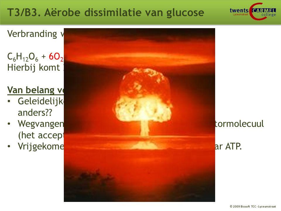 T3/B3. Aërobe dissimilatie van glucose