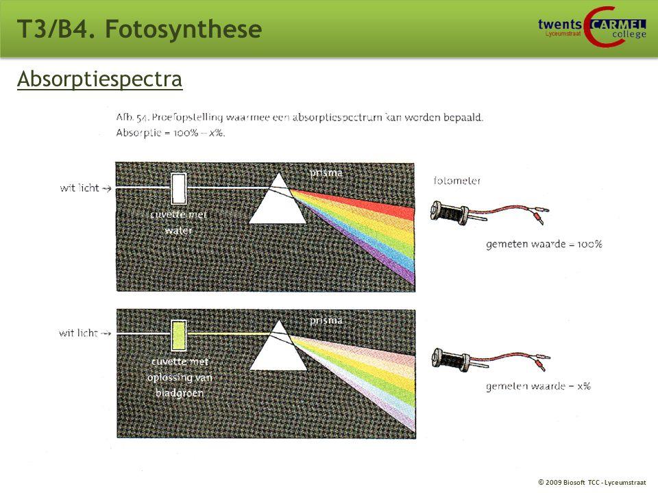 T3/B4. Fotosynthese Absorptiespectra