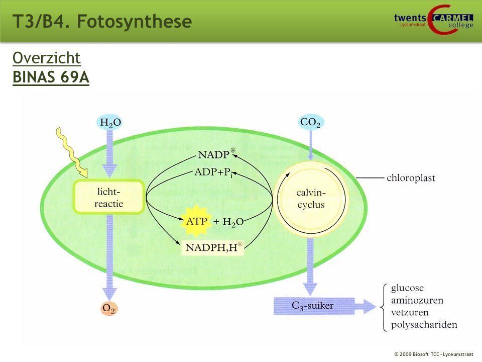 T3/B4. Fotosynthese Overzicht BINAS 69A