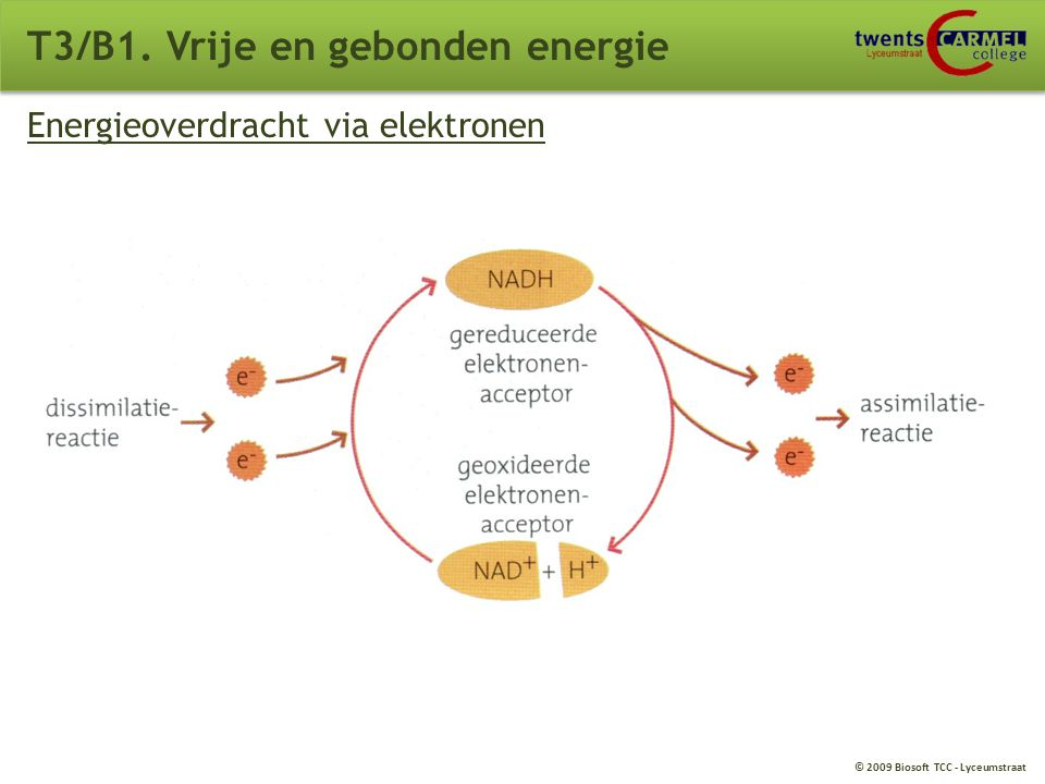 T3/B1. Vrije en gebonden energie