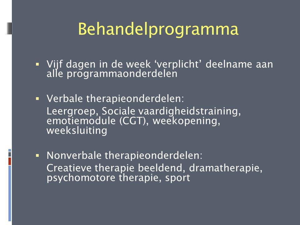 Behandelprogramma Vijf dagen in de week 'verplicht' deelname aan alle programmaonderdelen. Verbale therapieonderdelen: