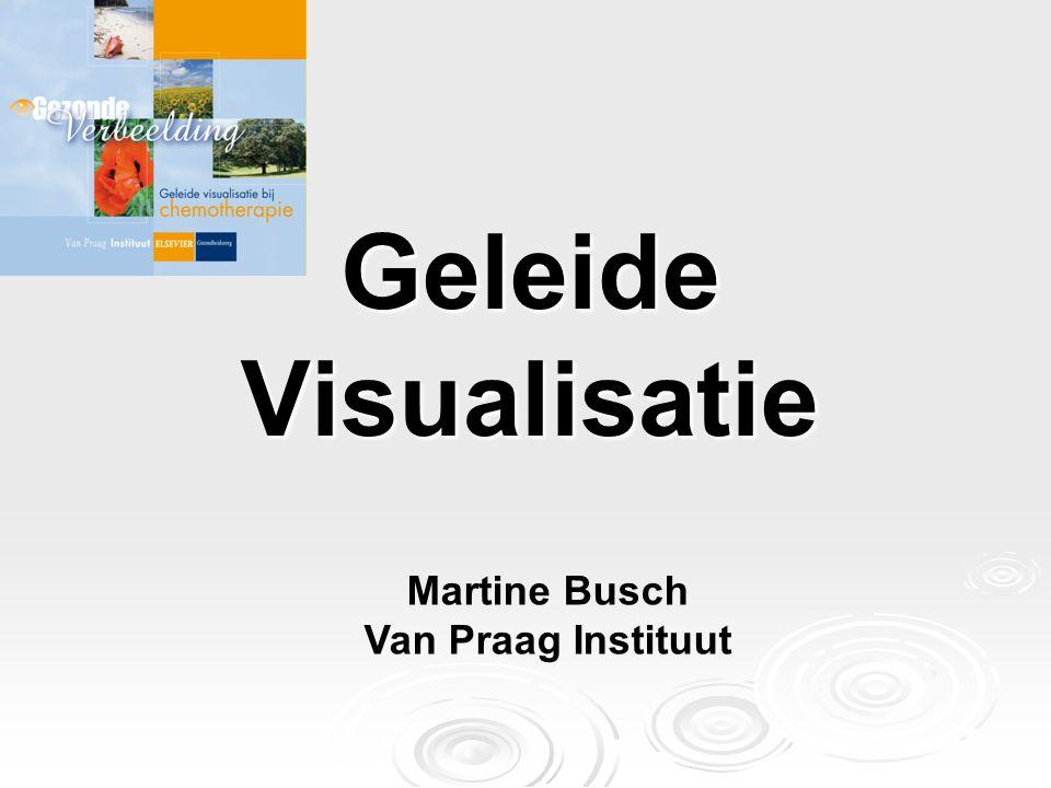 Geleide Visualisatie Martine Busch Van Praag Instituut