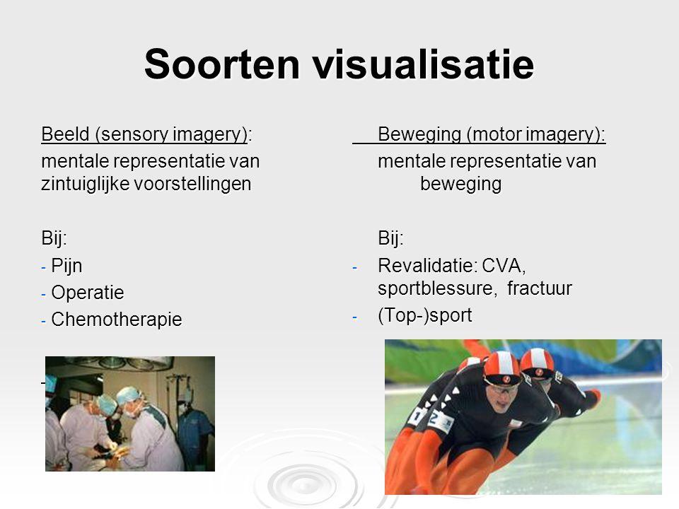 Soorten visualisatie Beeld (sensory imagery):