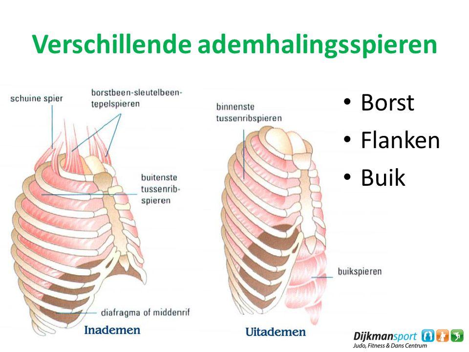 Verschillende ademhalingsspieren