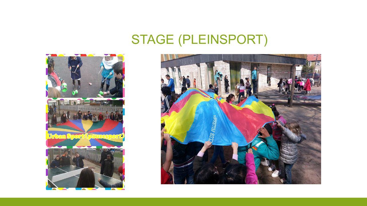 Stage (Pleinsport)