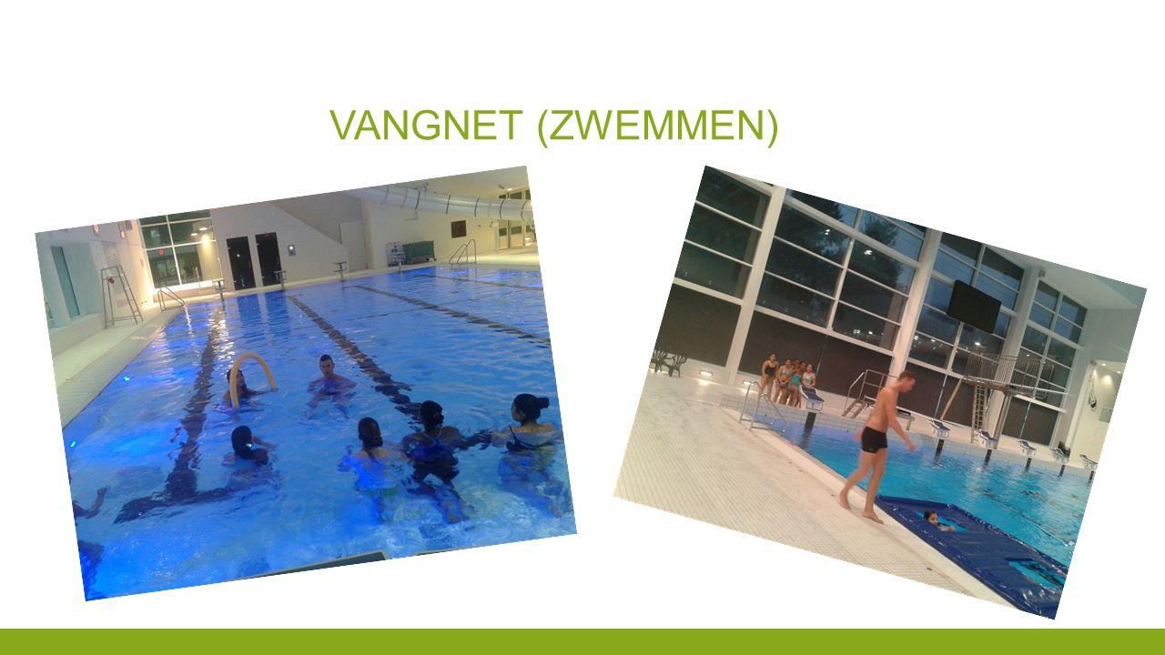 Vangnet (zwemmen)