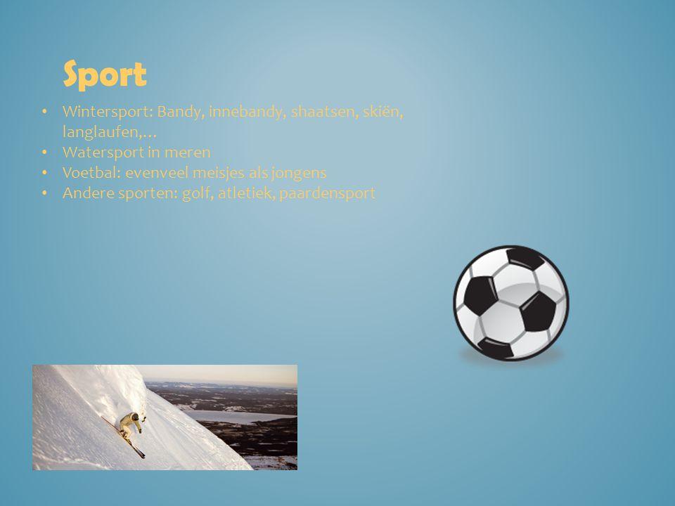 Sport Wintersport: Bandy, innebandy, shaatsen, skiën, langlaufen,…