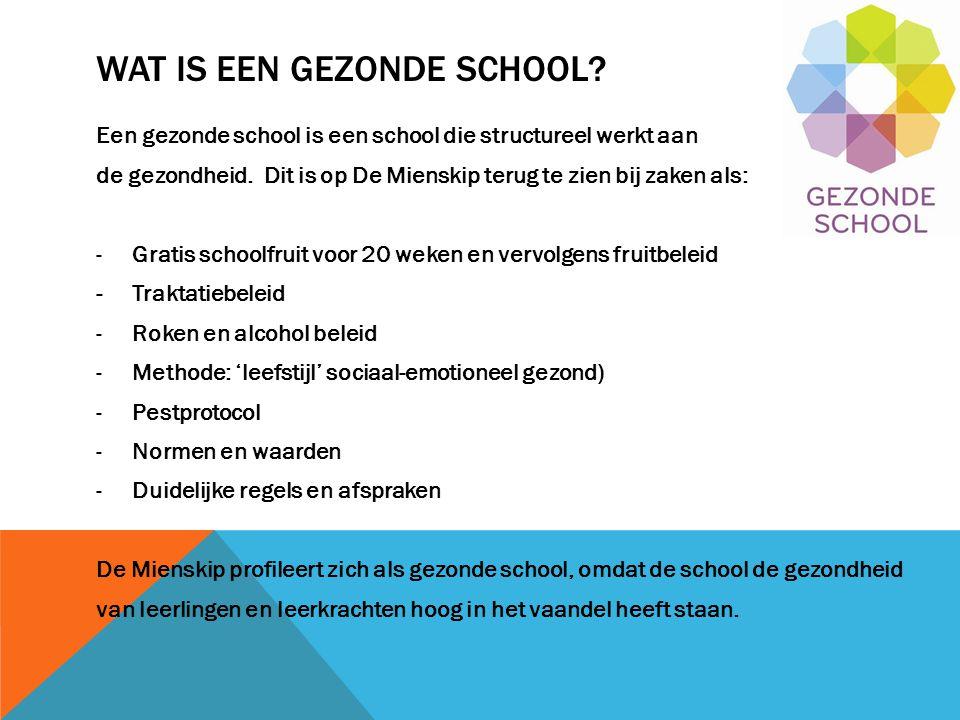 Wat is een gezonde school