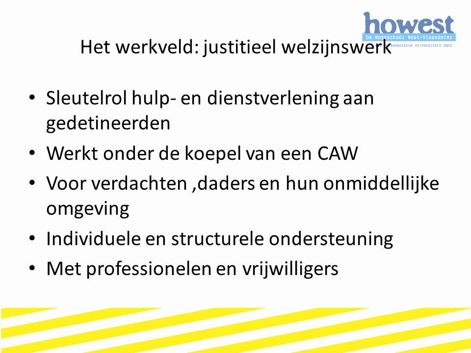 Het werkveld: justitieel welzijnswerk