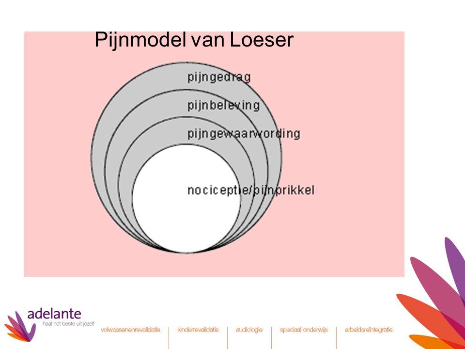 Pijnmodel van Loeser