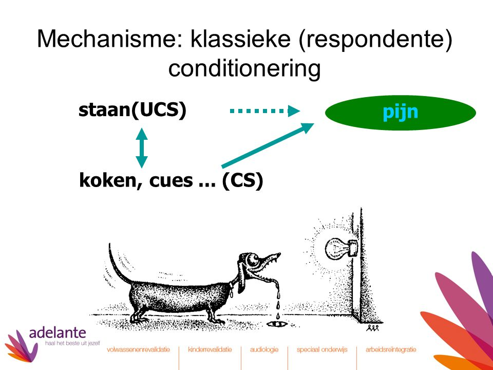 Mechanisme: klassieke (respondente) conditionering