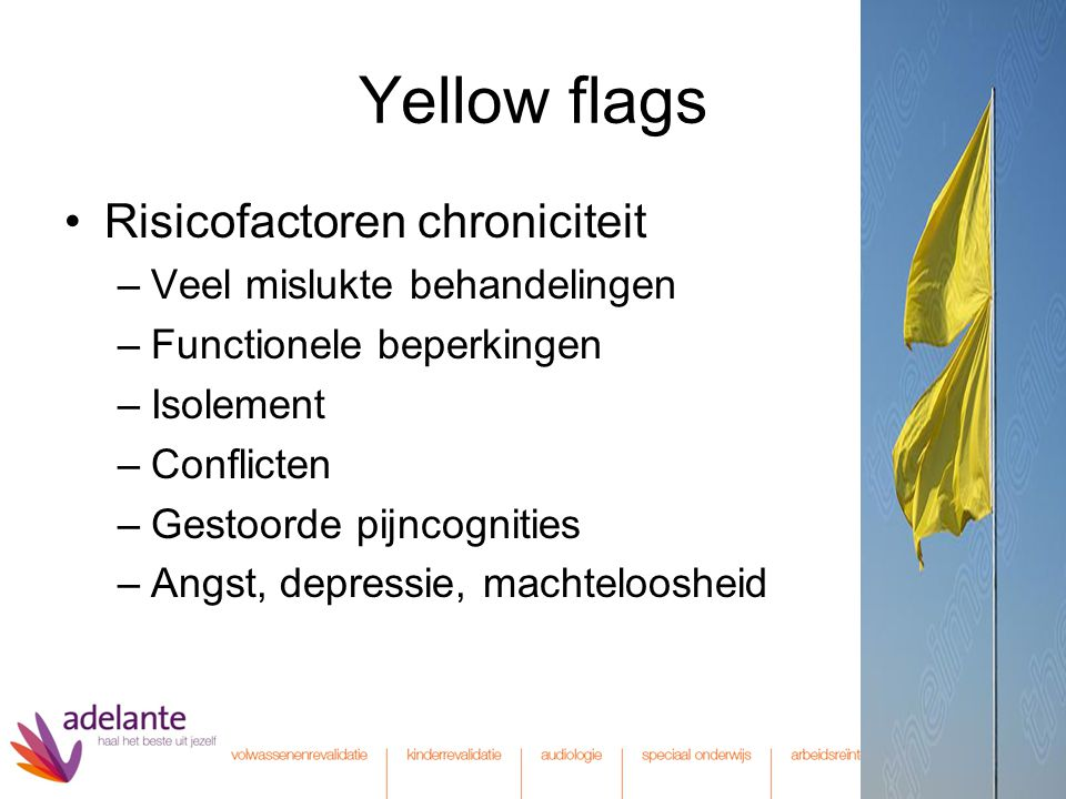 Yellow flags Risicofactoren chroniciteit Veel mislukte behandelingen
