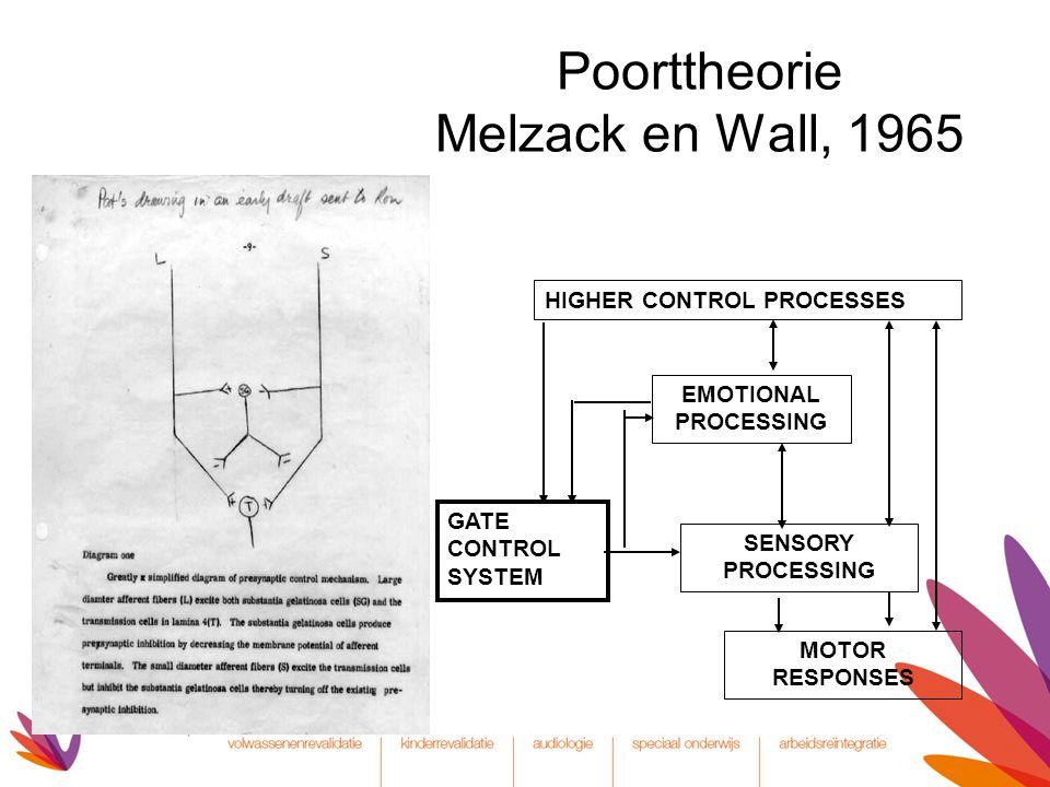 Poorttheorie Melzack en Wall, 1965