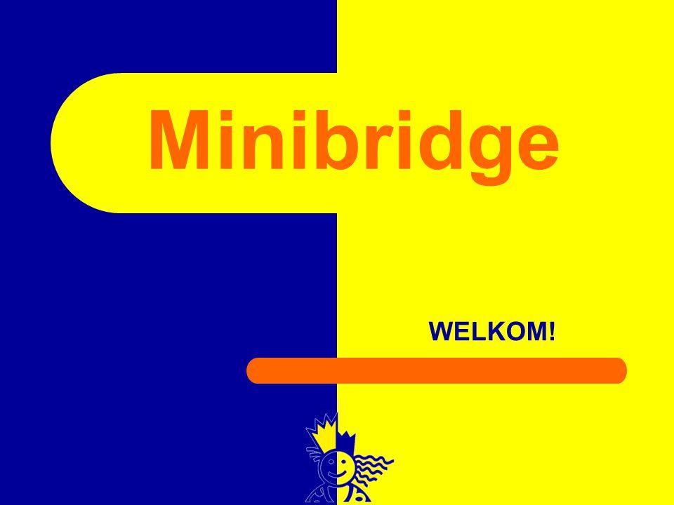 Minibridge WELKOM!