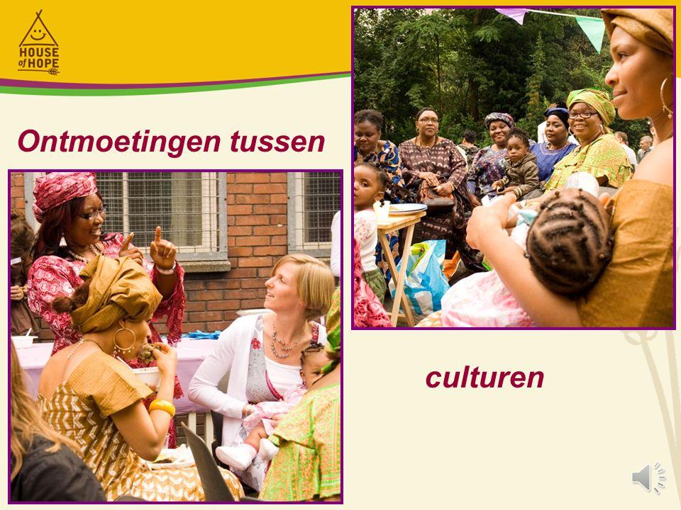 Ontmoetingen tussen culturen