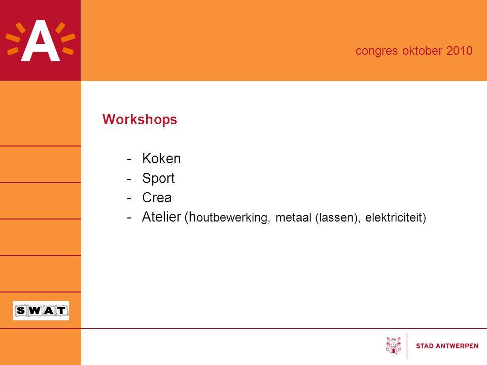Atelier (houtbewerking, metaal (lassen), elektriciteit)