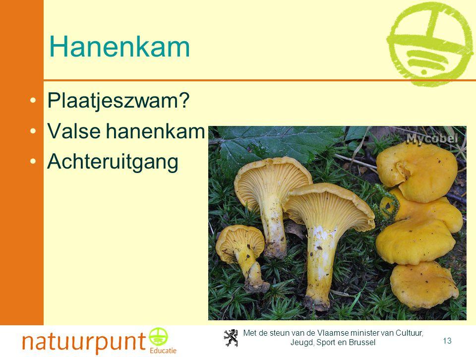 4-4-2017 Hanenkam Plaatjeszwam Valse hanenkam Achteruitgang