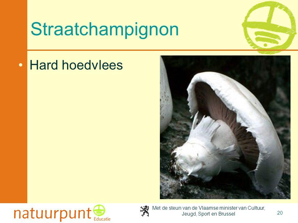 4-4-2017 Straatchampignon Hard hoedvlees