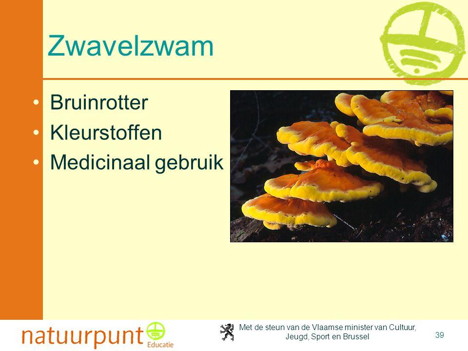 4-4-2017 Zwavelzwam Bruinrotter Kleurstoffen Medicinaal gebruik
