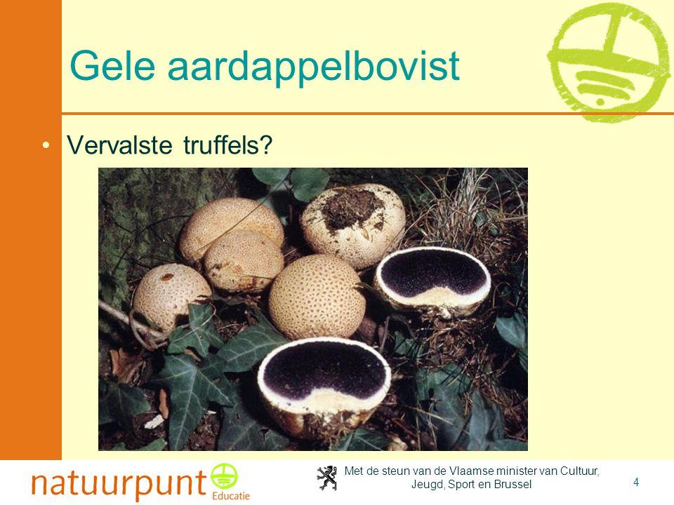 4-4-2017 Gele aardappelbovist Vervalste truffels