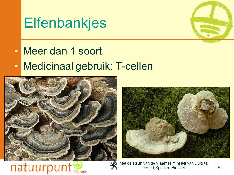4-4-2017 Elfenbankjes Meer dan 1 soort Medicinaal gebruik: T-cellen