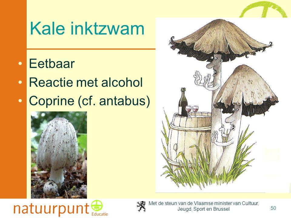 Kale inktzwam Eetbaar Reactie met alcohol Coprine (cf. antabus)
