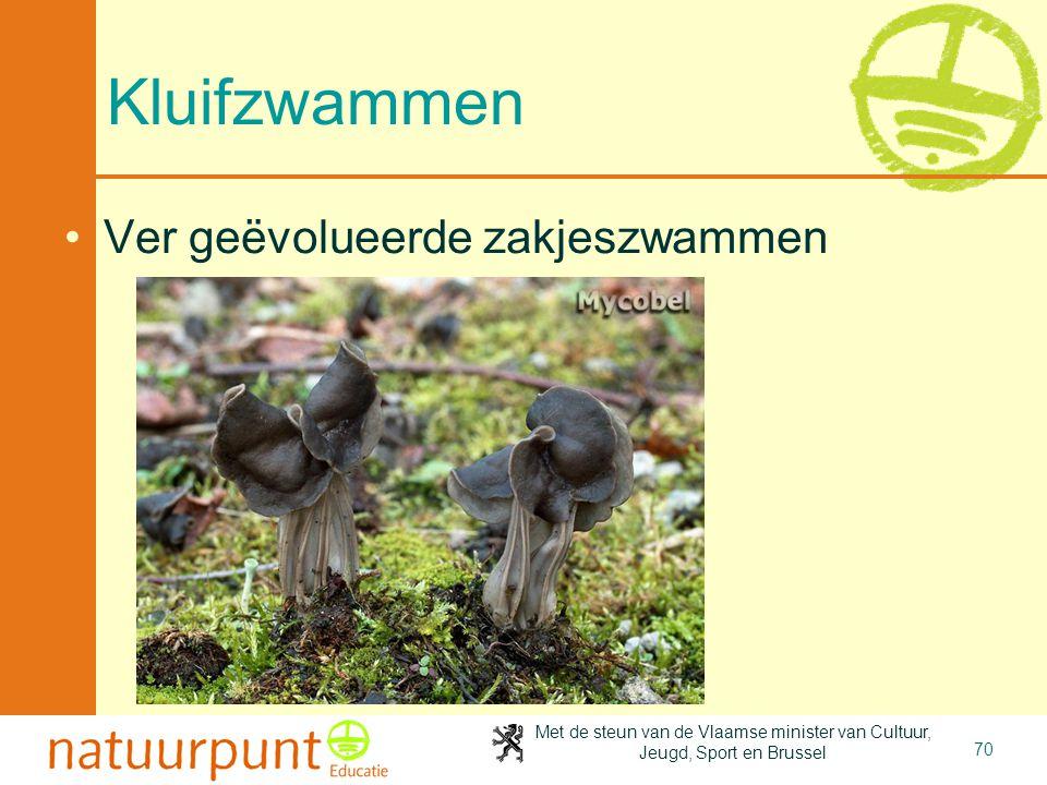 4-4-2017 Kluifzwammen Ver geëvolueerde zakjeszwammen