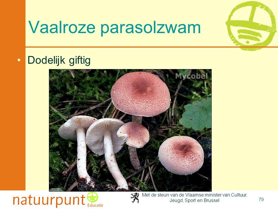 4-4-2017 Vaalroze parasolzwam Dodelijk giftig