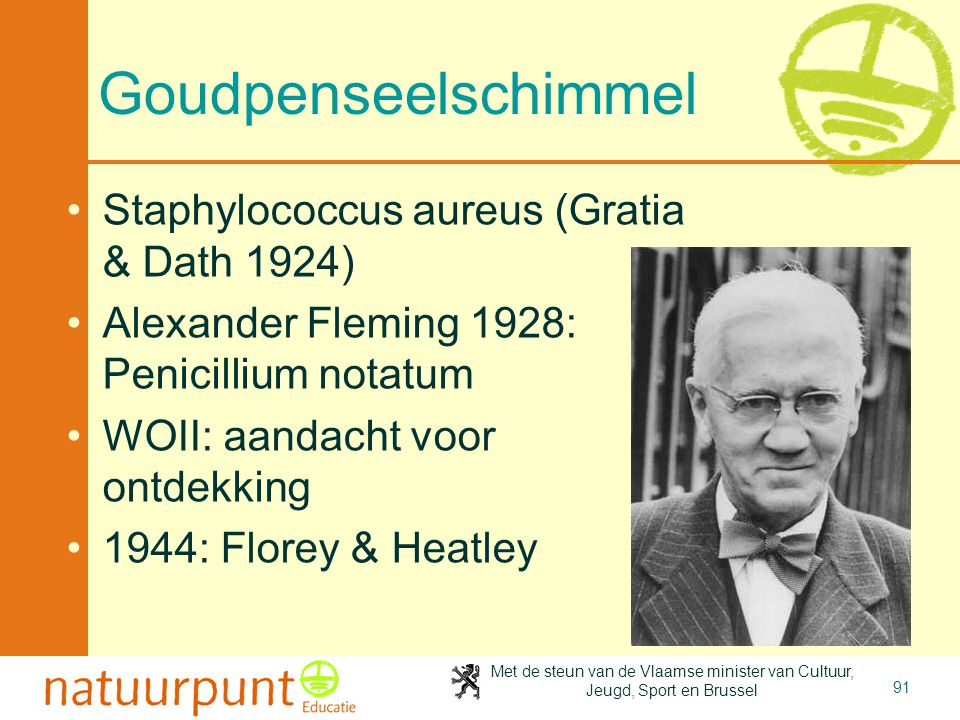 Goudpenseelschimmel Staphylococcus aureus (Gratia & Dath 1924)