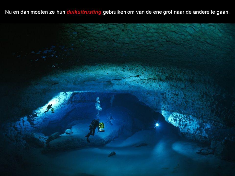 Nu en dan moeten ze hun duikuitrusting gebruiken om van de ene grot naar de andere te gaan.