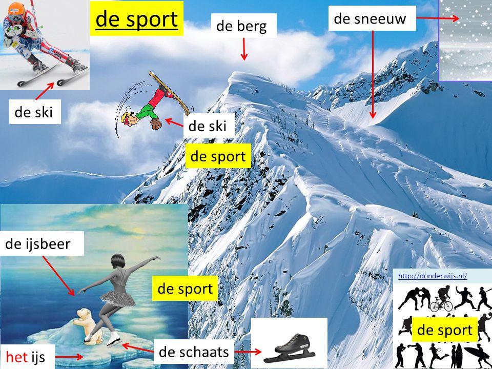 de sport de sneeuw de berg de ski de ski de sport de ijsbeer de sport