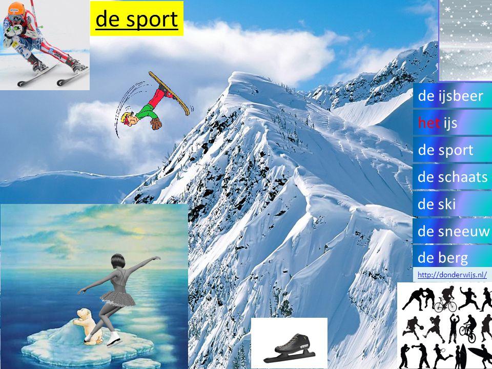 de sport de ijsbeer het ijs de sport de schaats de ski de sneeuw