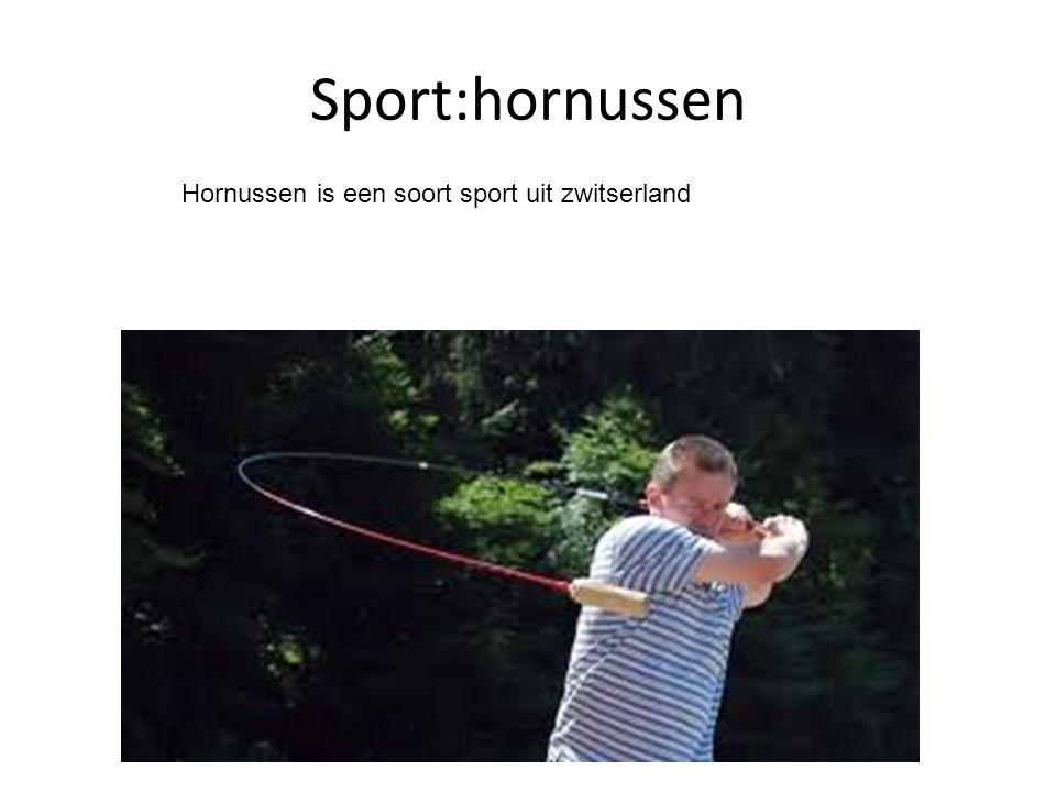 Sport:hornussen Hornussen is een soort sport uit zwitserland