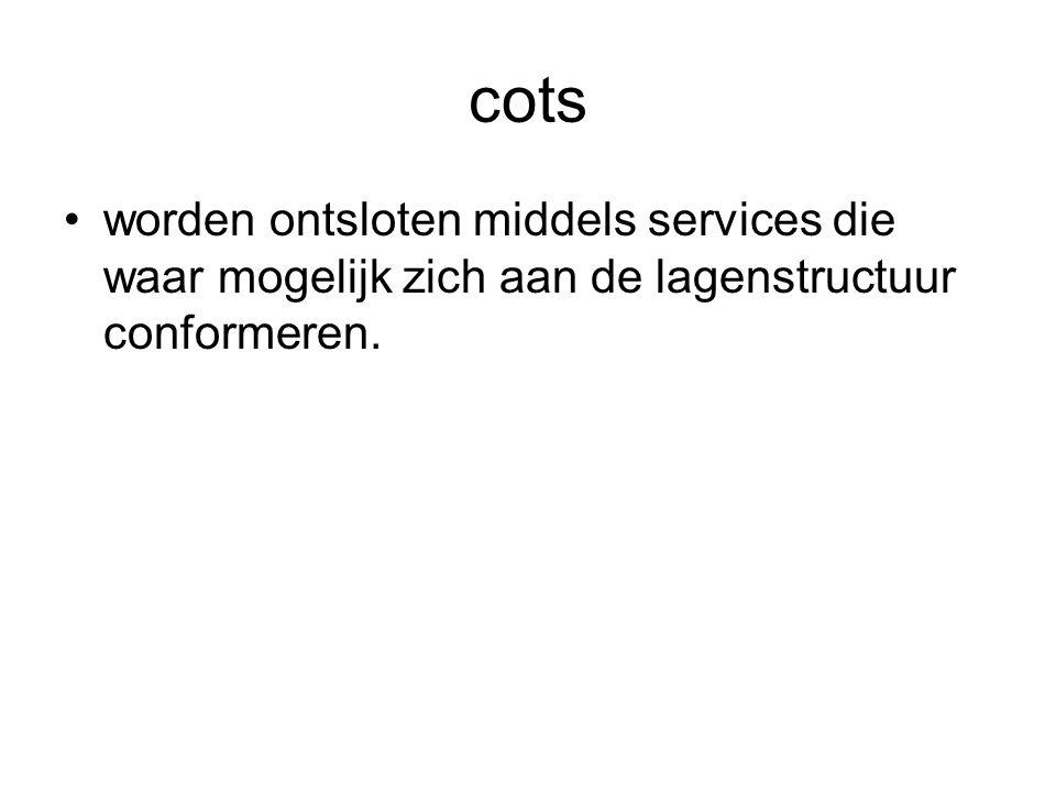 cots worden ontsloten middels services die waar mogelijk zich aan de lagenstructuur conformeren.