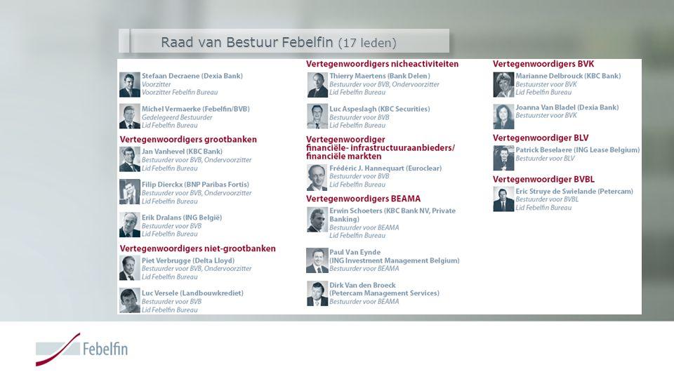 Raad van Bestuur Febelfin (17 leden)