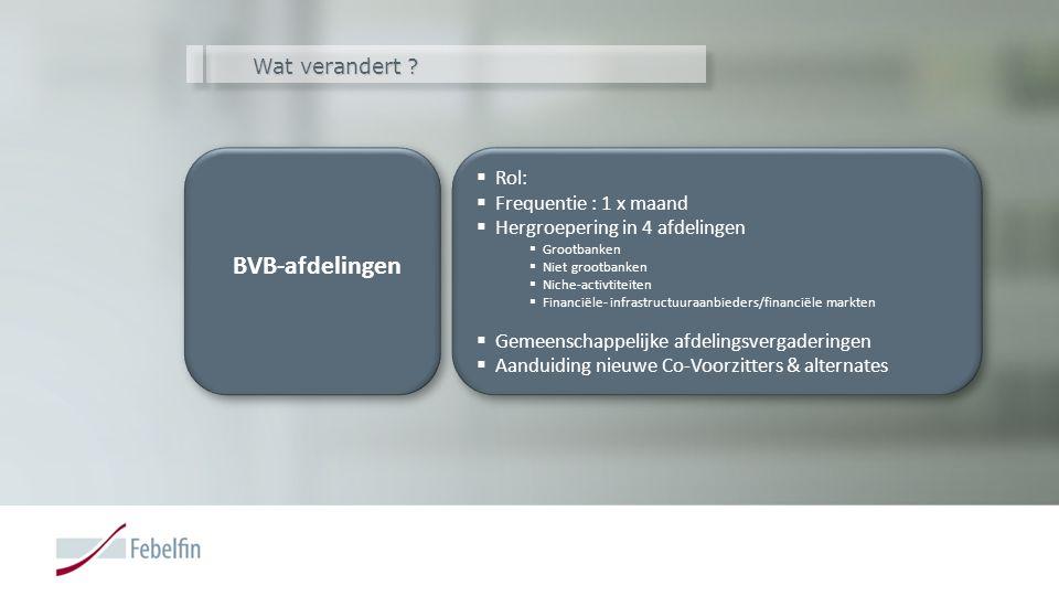 BVB-afdelingen Wat verandert Rol: Frequentie : 1 x maand