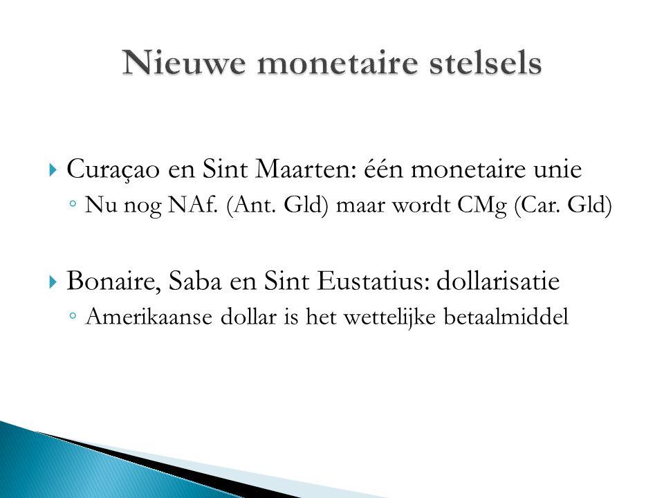 Nieuwe monetaire stelsels