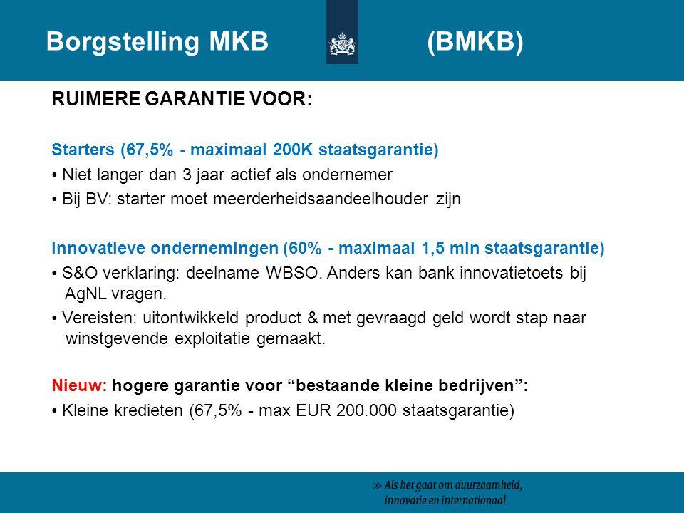Borgstelling MKB (BMKB)