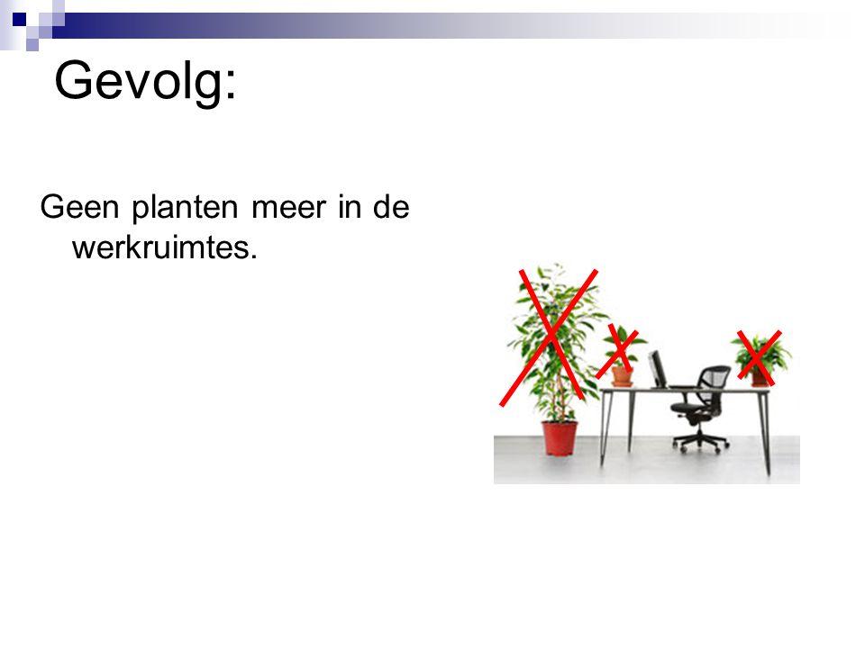 Gevolg: Geen planten meer in de werkruimtes.