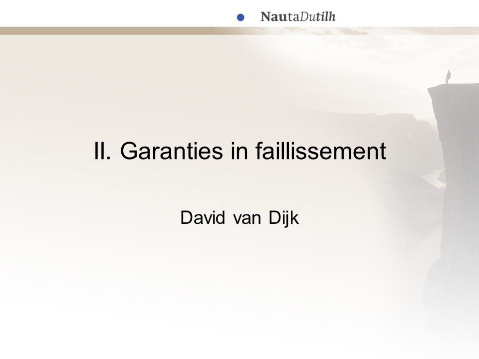 II. Garanties in faillissement