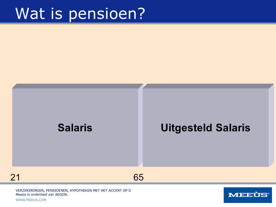 Wat is pensioen Salaris Uitgesteld Salaris 21 65