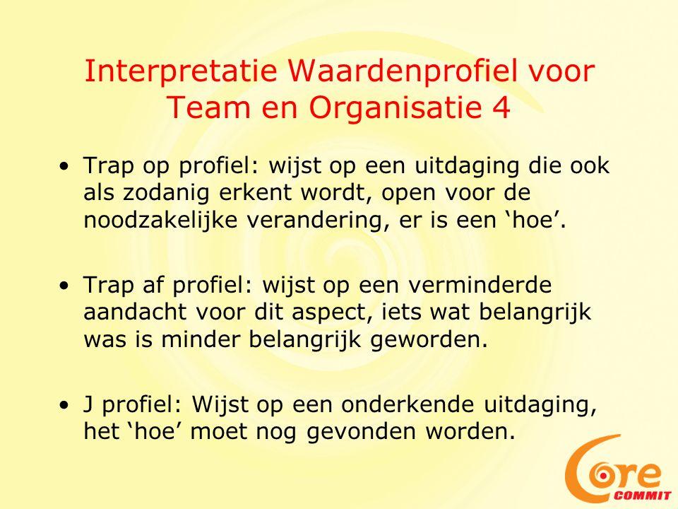 Interpretatie Waardenprofiel voor Team en Organisatie 4
