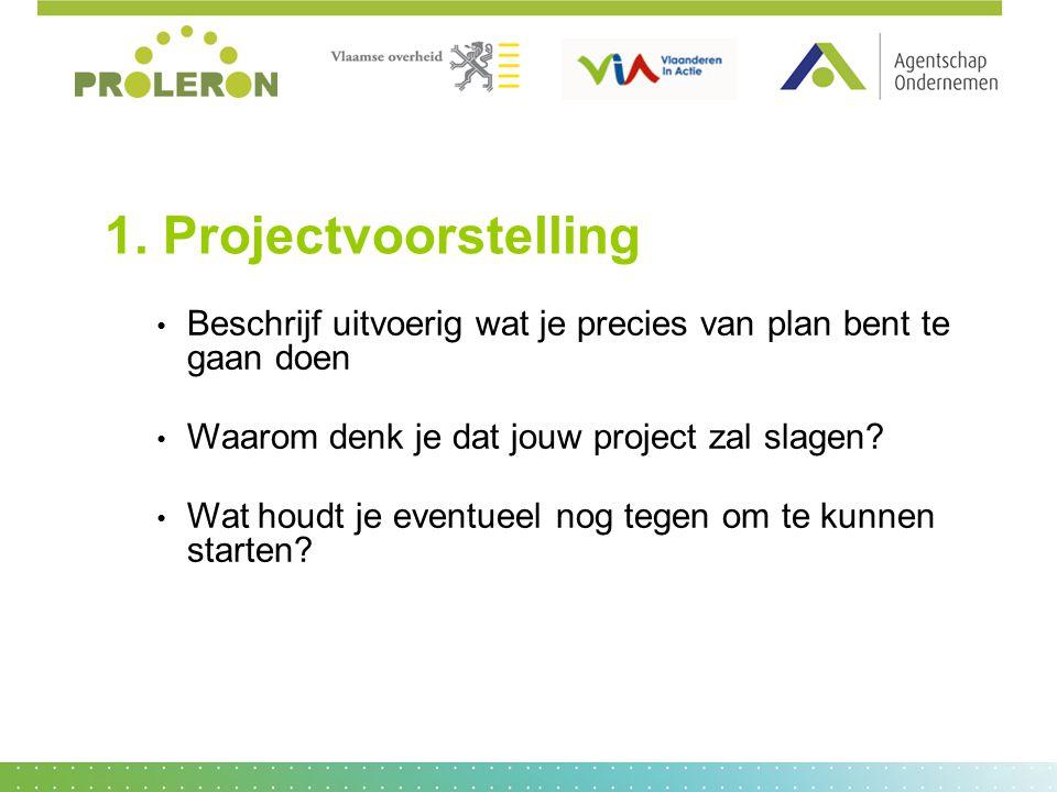 1. Projectvoorstelling Beschrijf uitvoerig wat je precies van plan bent te gaan doen. Waarom denk je dat jouw project zal slagen