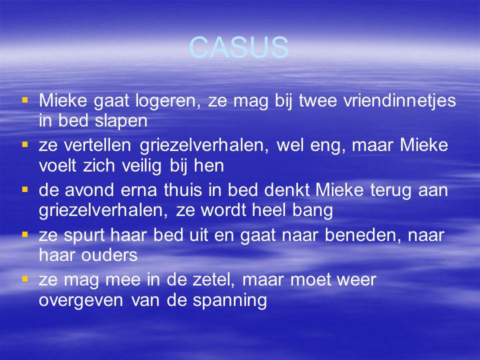 CASUS Mieke gaat logeren, ze mag bij twee vriendinnetjes in bed slapen