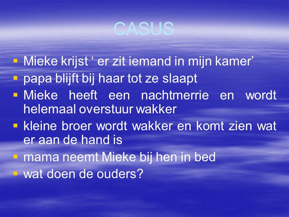 CASUS Mieke krijst ' er zit iemand in mijn kamer'