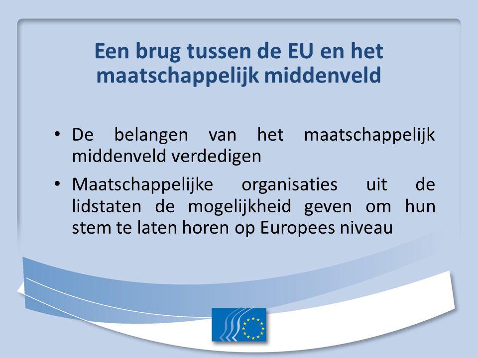 Een brug tussen de EU en het maatschappelijk middenveld