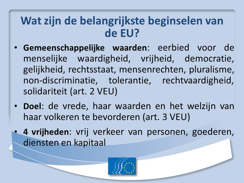 Wat zijn de belangrijkste beginselen van de EU